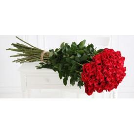 29 красных роз высотой 80 см.