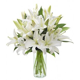 15 белых лилий в вазе