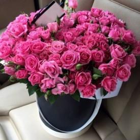 Чуточку розового внимания