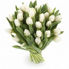 Эти белые тюльпаны!